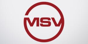 Emblem MSV-3D GmbH
